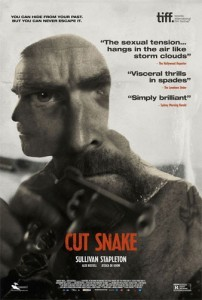 Раненый змей