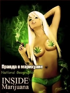 правда о марихуане