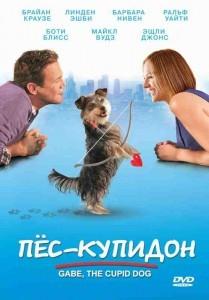 пес-купидон